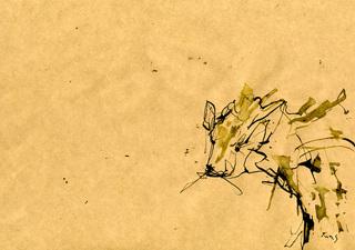 2012_4_27_02.jpg