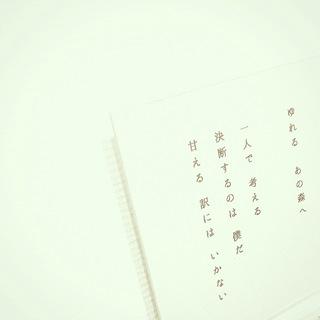 2014_9_21_05.JPG