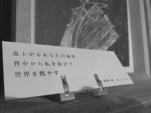 2015_12_19_07.JPG